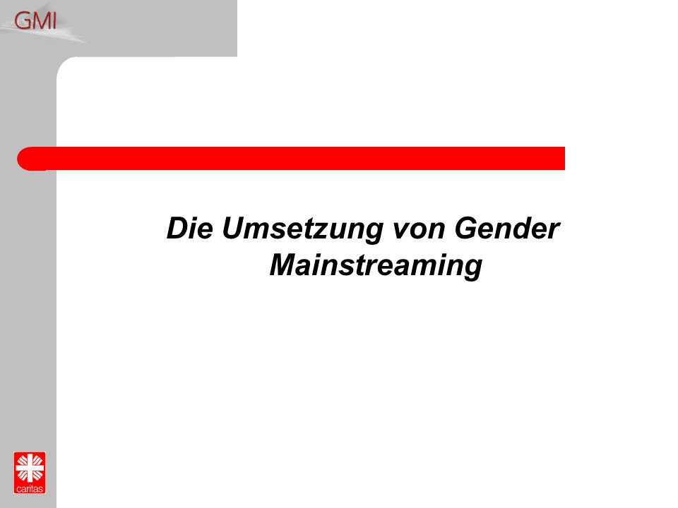 Die Umsetzung von Gender Mainstreaming