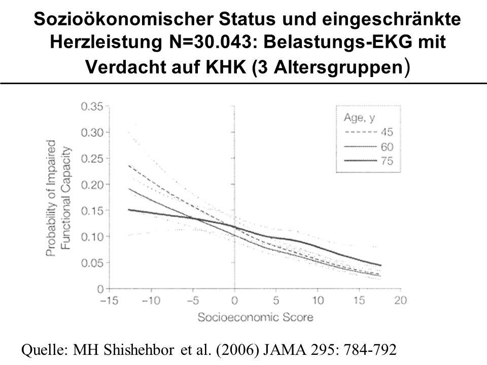 Sozioökonomischer Status und eingeschränkte Herzleistung N=30