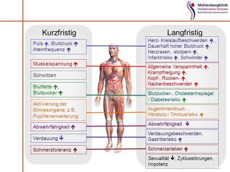 Kurzfristig Langfristig Puls , Blutdruck  Atemfrequenz 