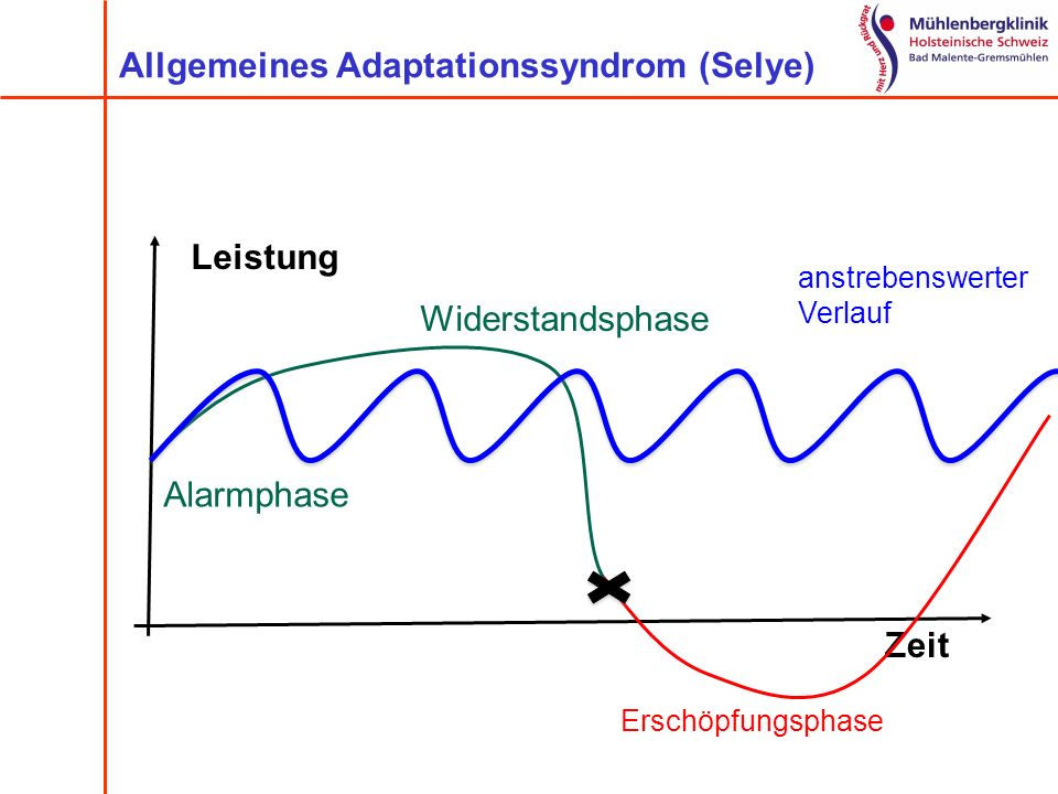 Allgemeines Adaptationssyndrom (Selye)