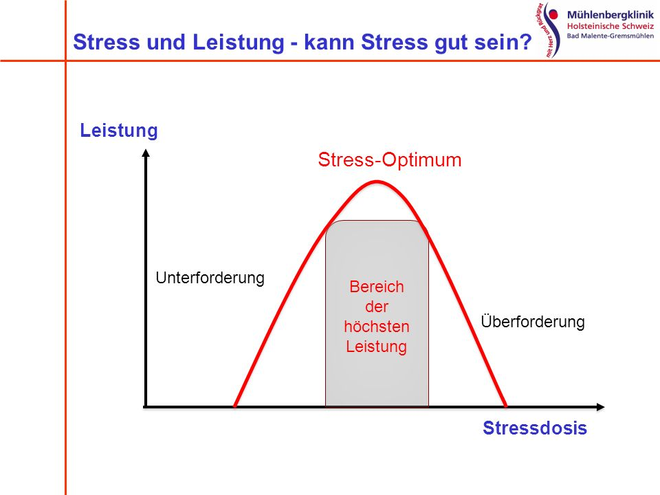 Stress und Leistung - kann Stress gut sein