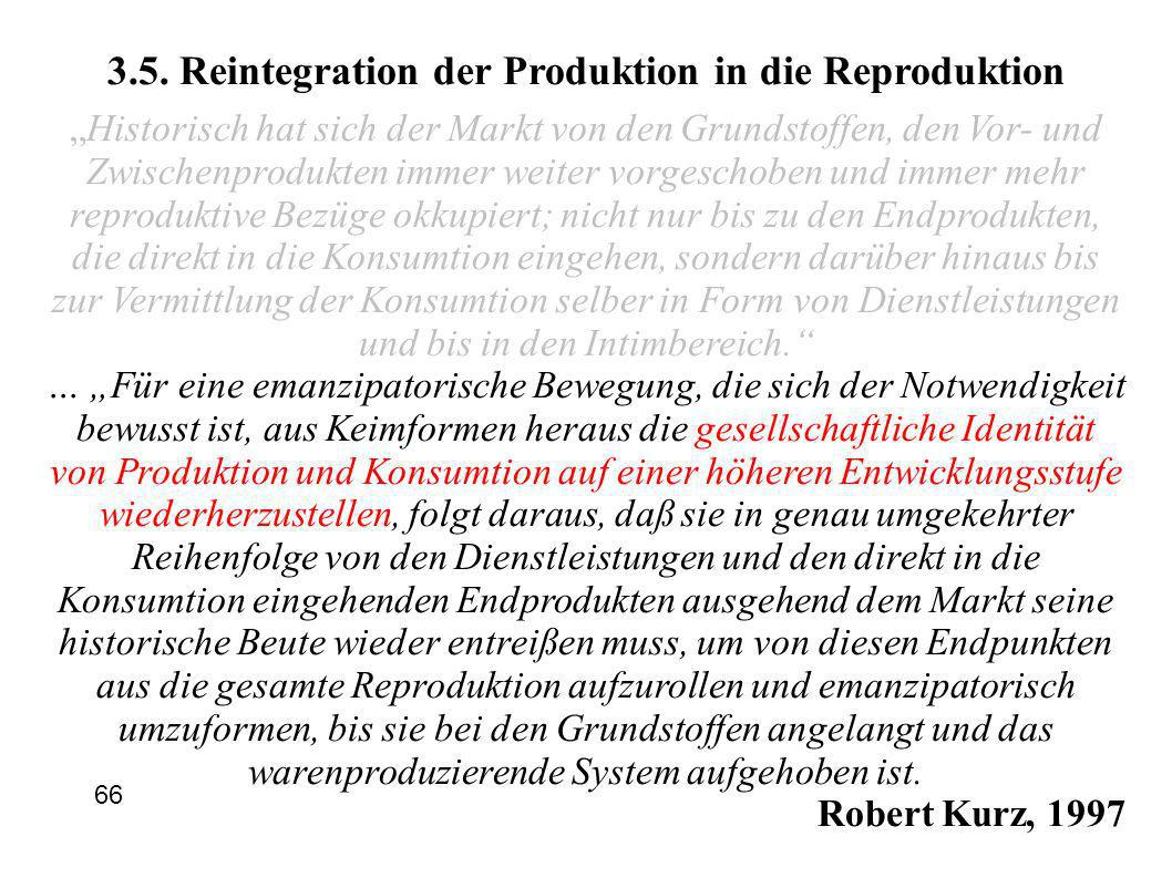 3.5. Reintegration der Produktion in die Reproduktion