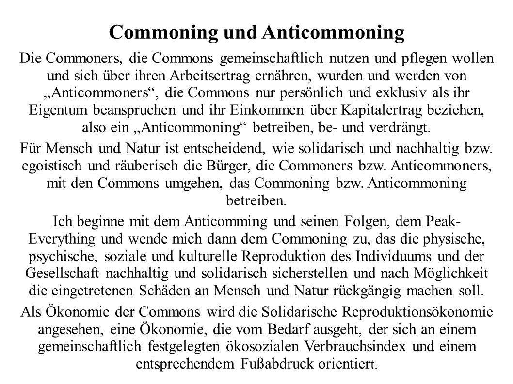 Commoning und Anticommoning
