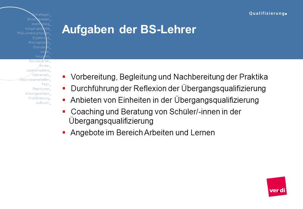Aufgaben der BS-Lehrer