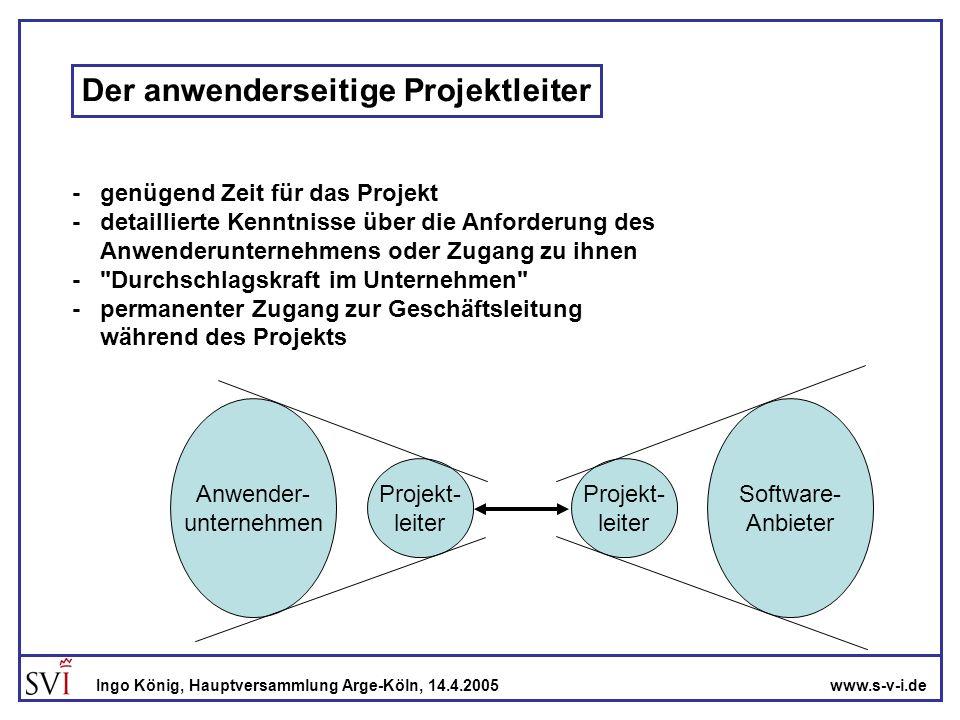 Der anwenderseitige Projektleiter