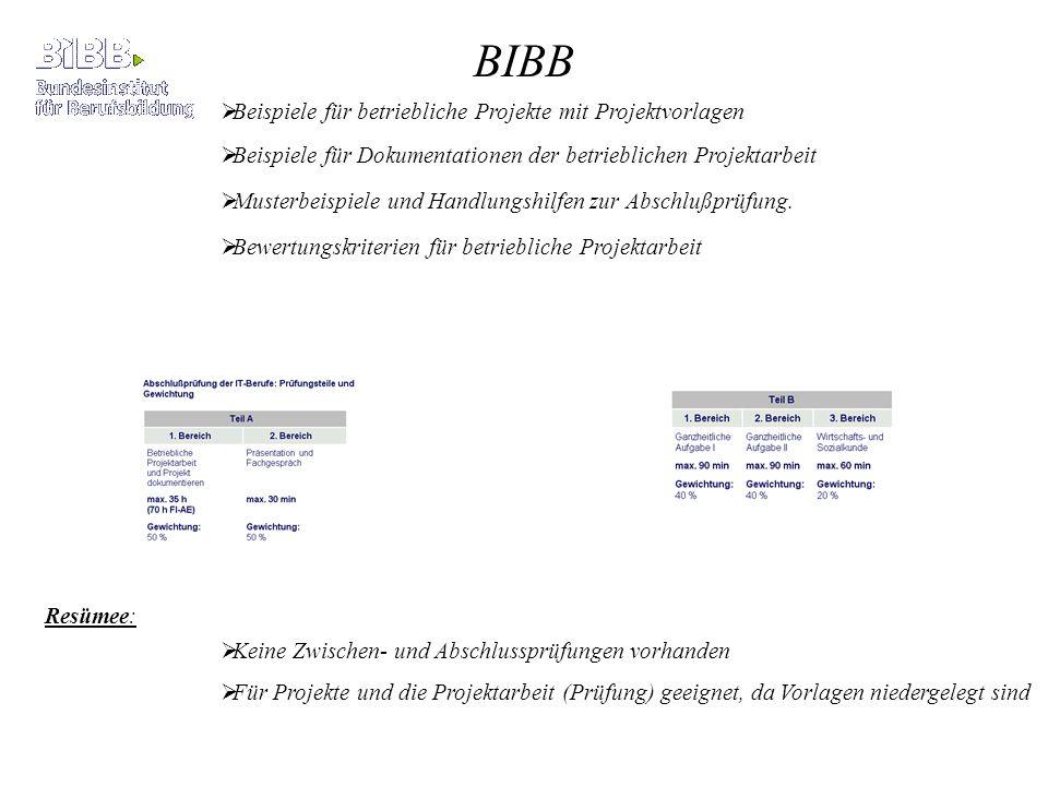 BIBB Beispiele für betriebliche Projekte mit Projektvorlagen