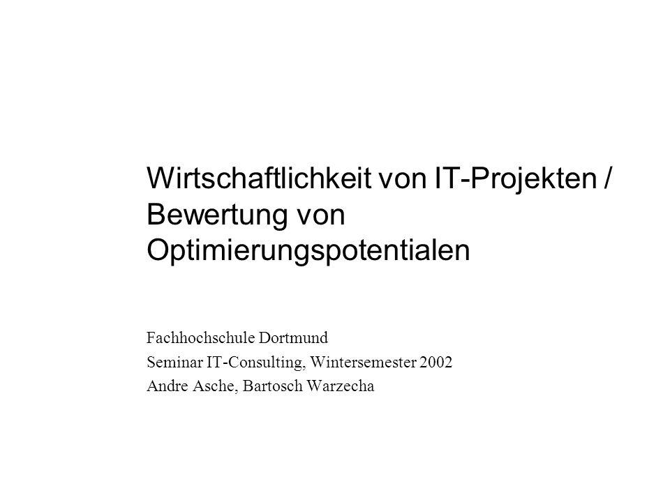 Wirtschaftlichkeit von IT-Projekten / Bewertung von Optimierungspotentialen