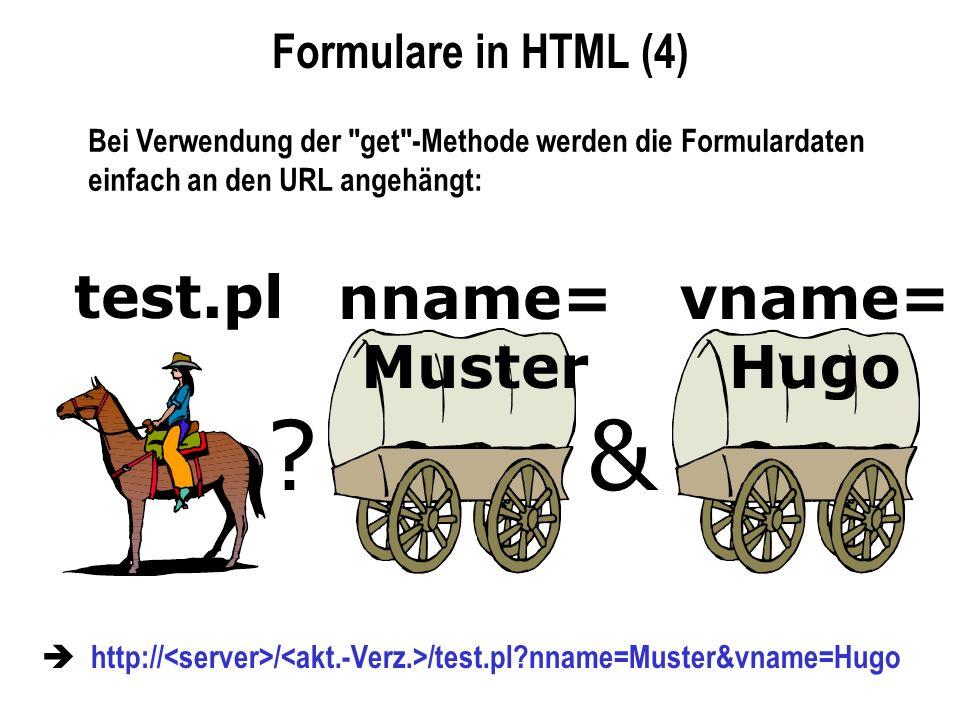& test.pl nname= Muster vname= Hugo Formulare in HTML (4)