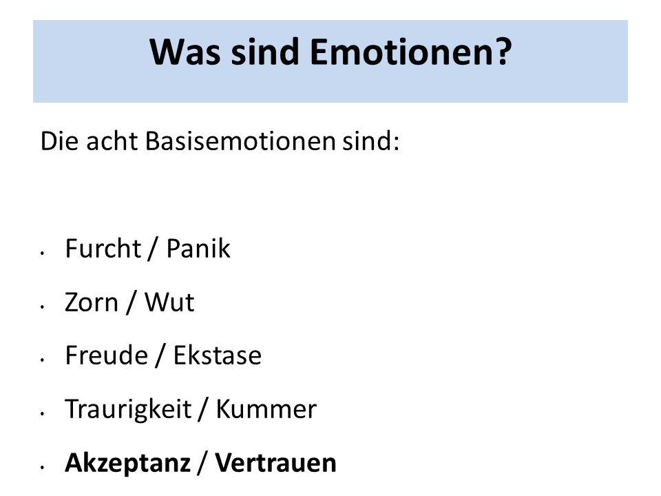 Was sind Emotionen Die acht Basisemotionen sind: Furcht / Panik