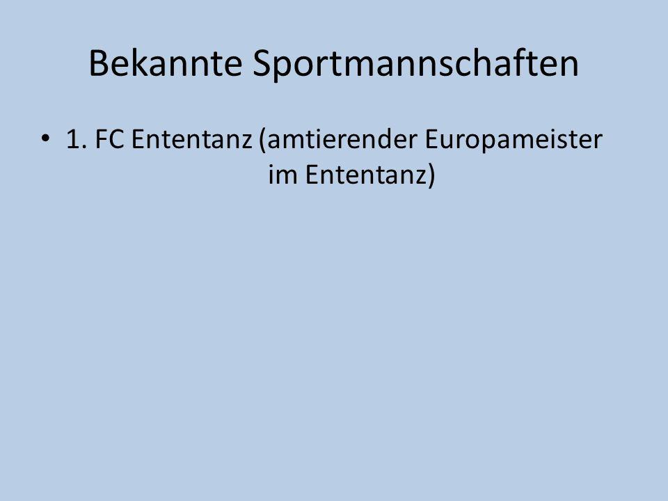 Bekannte Sportmannschaften