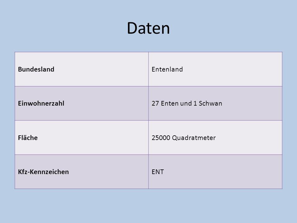 Daten Bundesland Entenland Einwohnerzahl 27 Enten und 1 Schwan Fläche