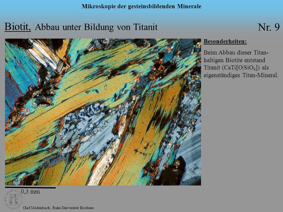 Biotit, Abbau unter Bildung von Titanit Nr. 9
