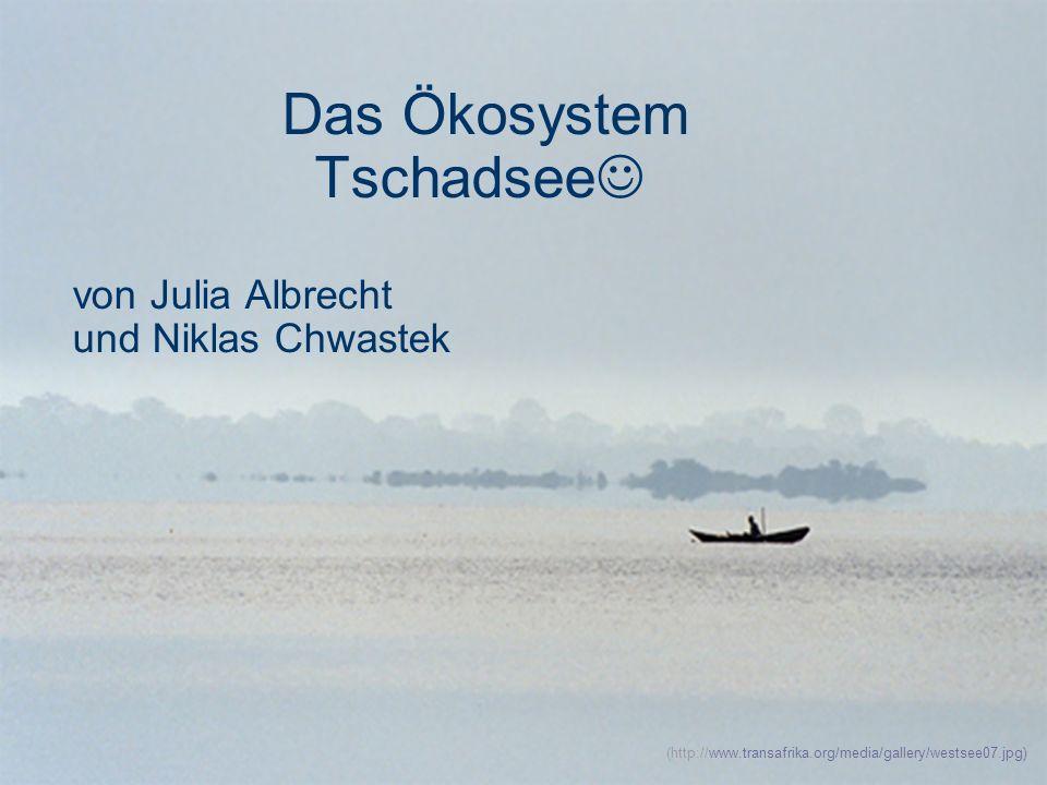 Das Ökosystem Tschadsee von Julia Albrecht und Niklas Chwastek
