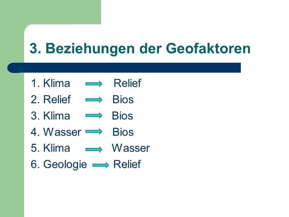 3. Beziehungen der Geofaktoren