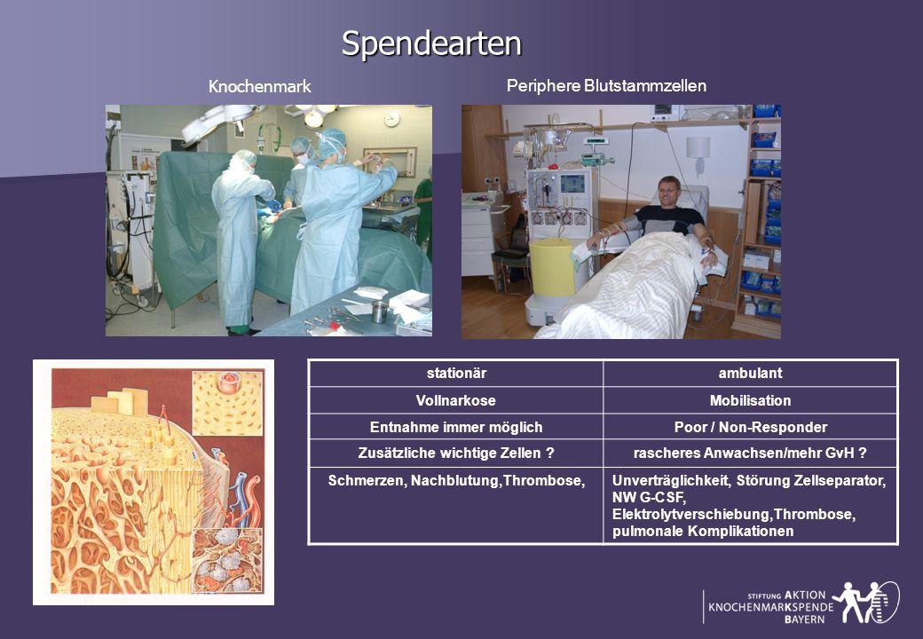 Spendearten Knochenmark Periphere Blutstammzellen stationär ambulant