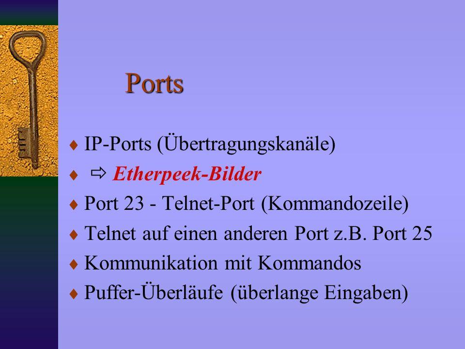 Ports IP-Ports (Übertragungskanäle)  Etherpeek-Bilder