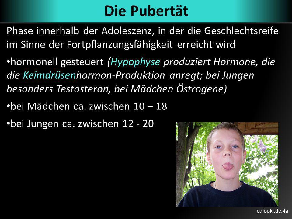 Die Pubertät Phase innerhalb der Adoleszenz, in der die Geschlechtsreife im Sinne der Fortpflanzungsfähigkeit erreicht wird.