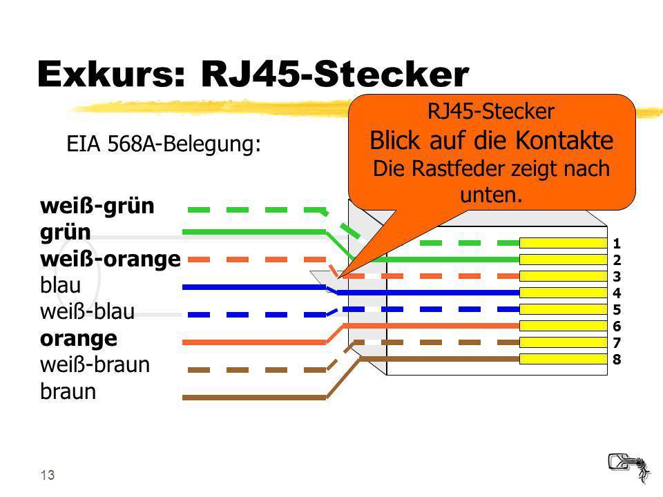 RJ45-Stecker Blick auf die Kontakte Die Rastfeder zeigt nach unten.
