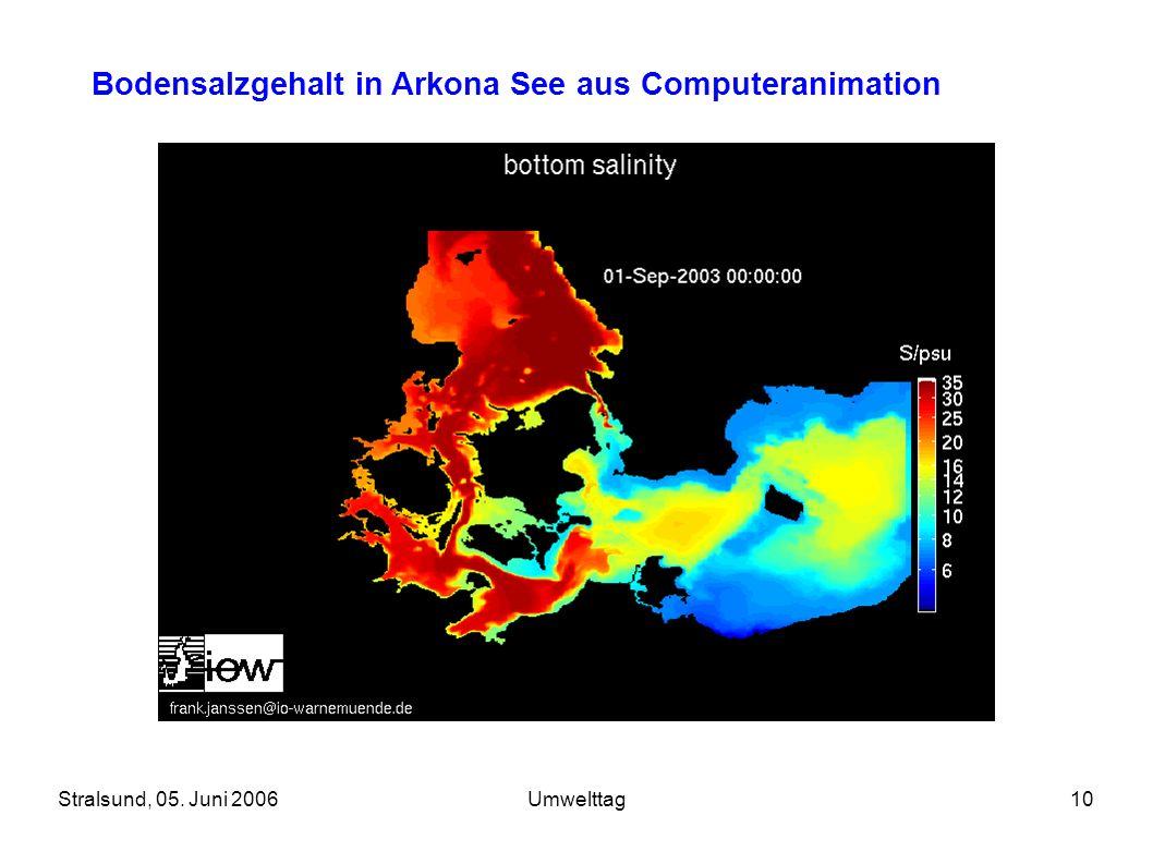 Bodensalzgehalt in Arkona See aus Computeranimation