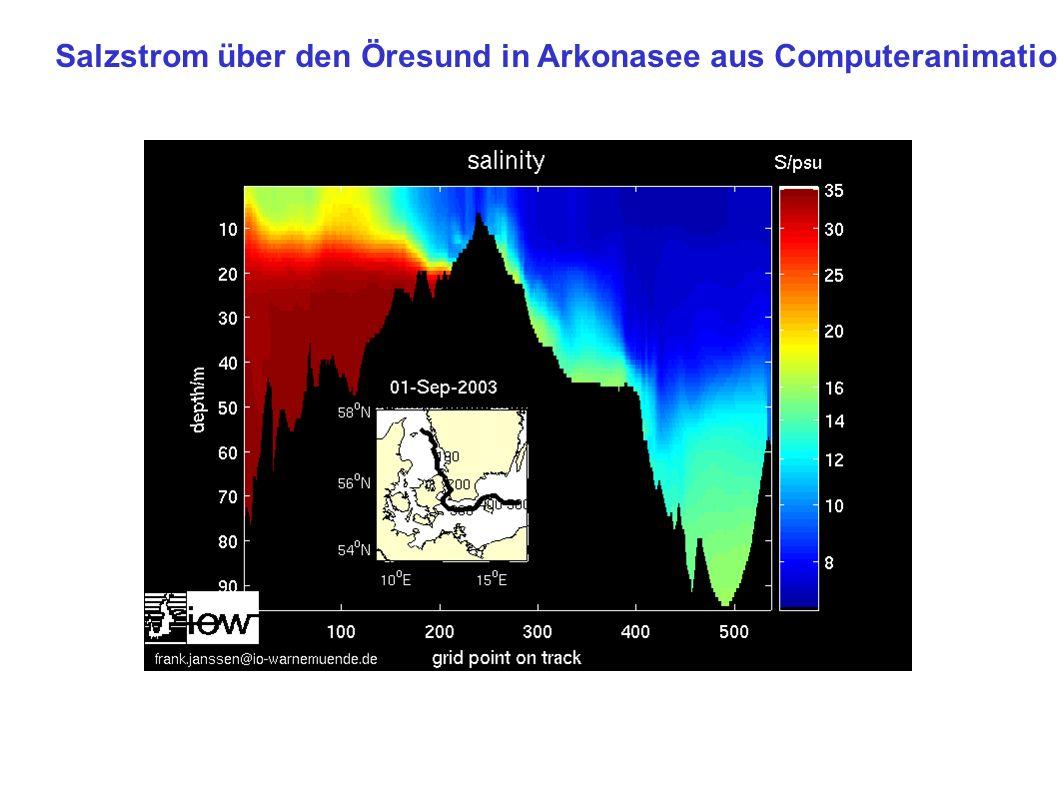 Salzstrom über den Öresund in Arkonasee aus Computeranimation
