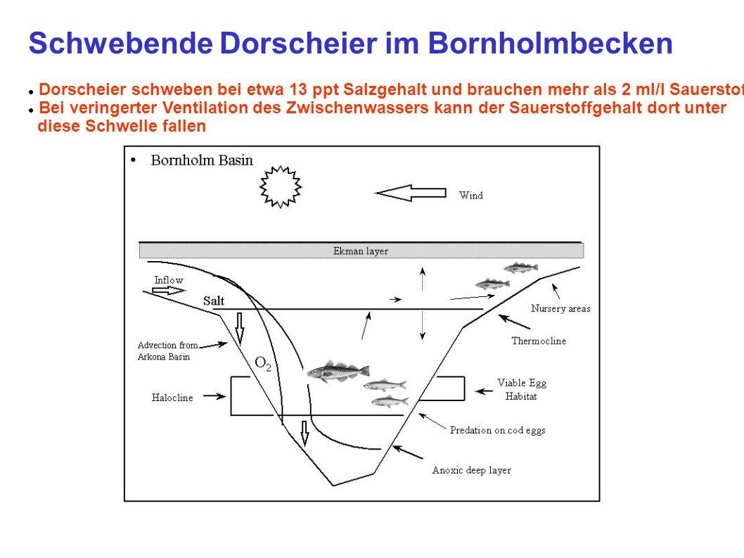 Schwebende Dorscheier im Bornholmbecken