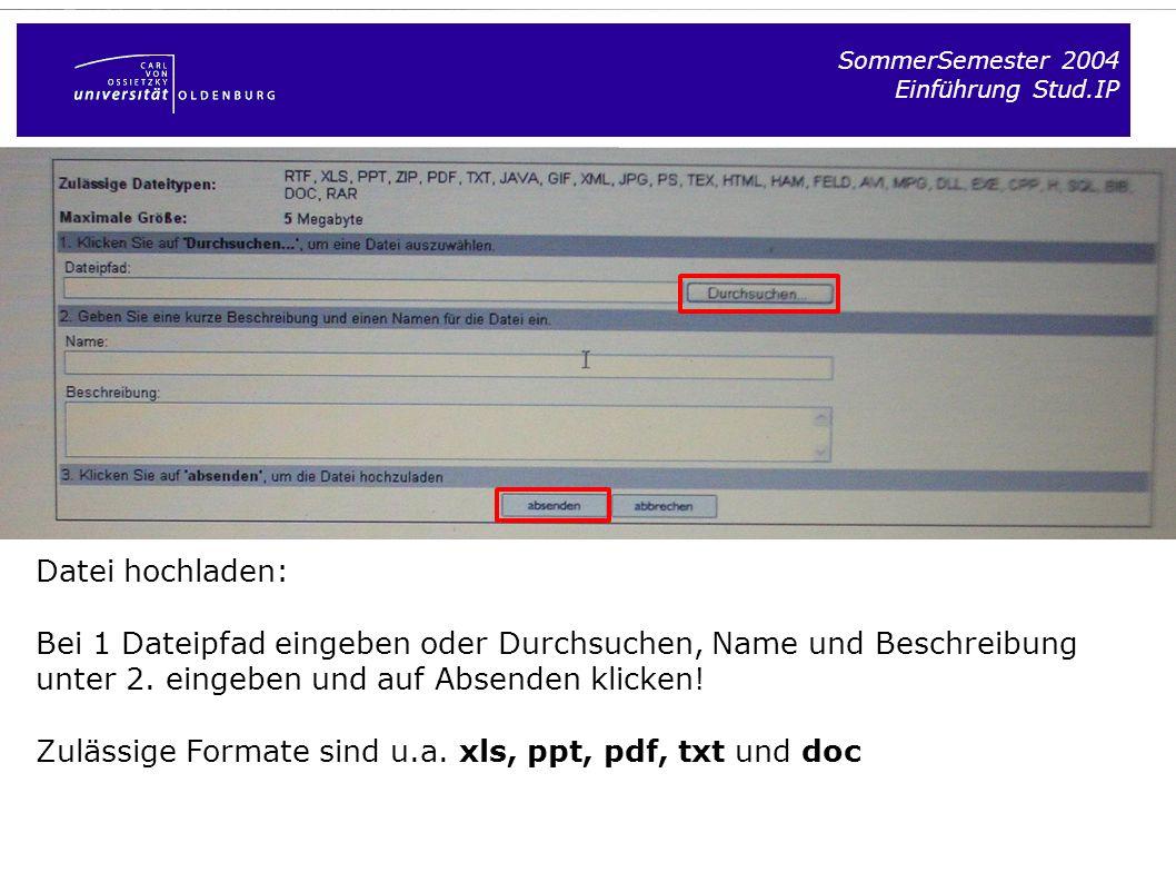 Zulässige Formate sind u.a. xls, ppt, pdf, txt und doc