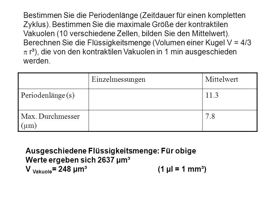V Vakuole= 248 µm³ (1 µl = 1 mm³)