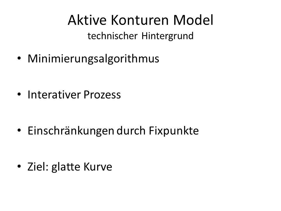 Aktive Konturen Model technischer Hintergrund