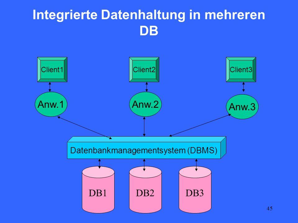 Integrierte Datenhaltung in mehreren DB