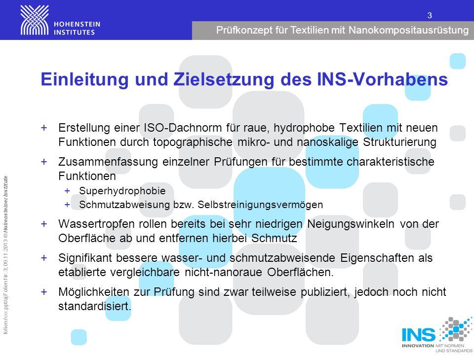 Einleitung und Zielsetzung des INS-Vorhabens