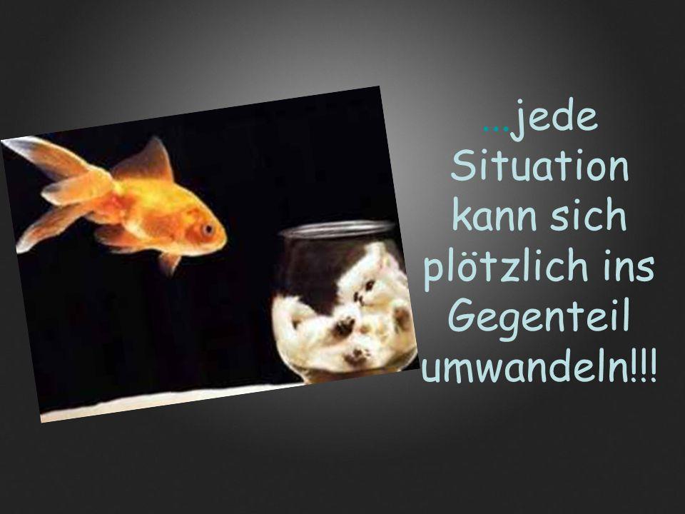 ...jede Situation kann sich plötzlich ins Gegenteil umwandeln!!!