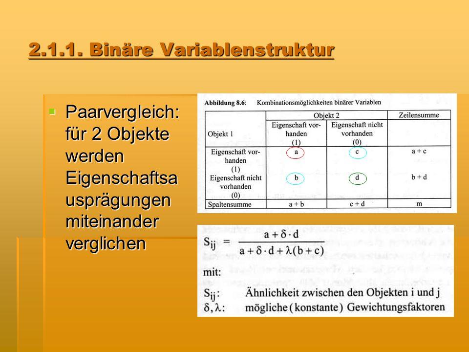 2.1.1. Binäre Variablenstruktur