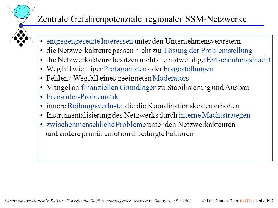 Zentrale Gefahrenpotenziale regionaler SSM-Netzwerke