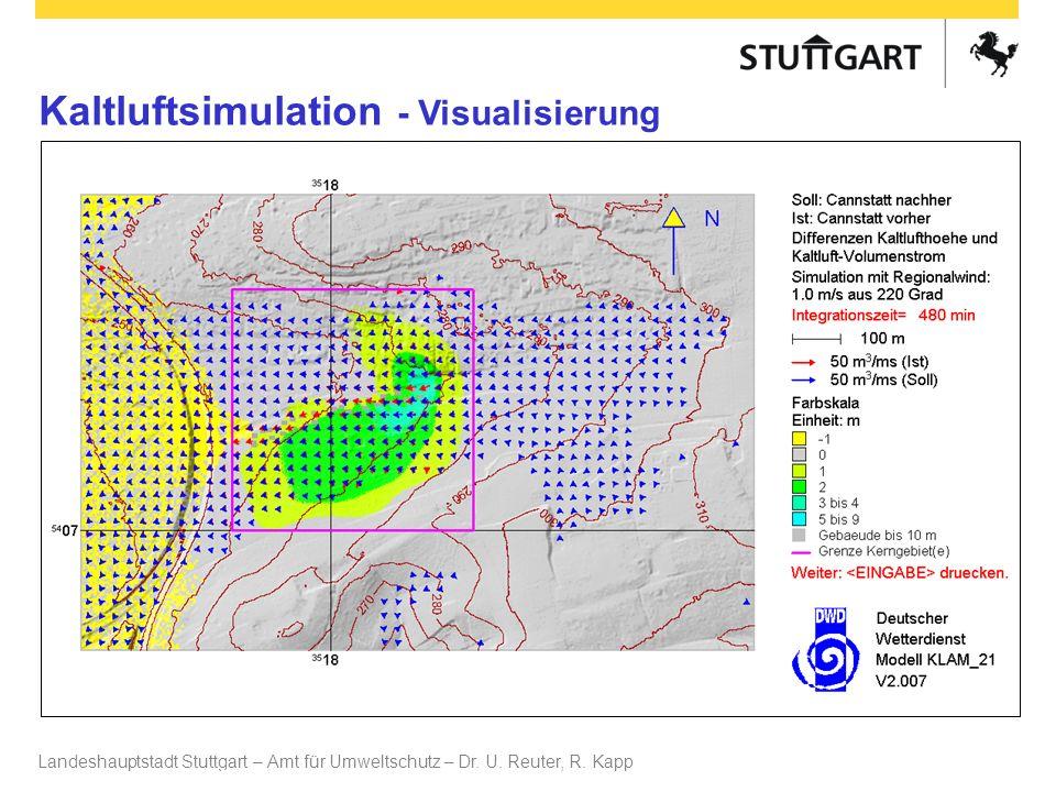 Kaltluftsimulation - Visualisierung