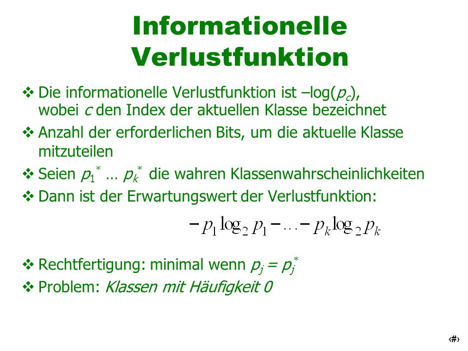 Informationelle Verlustfunktion