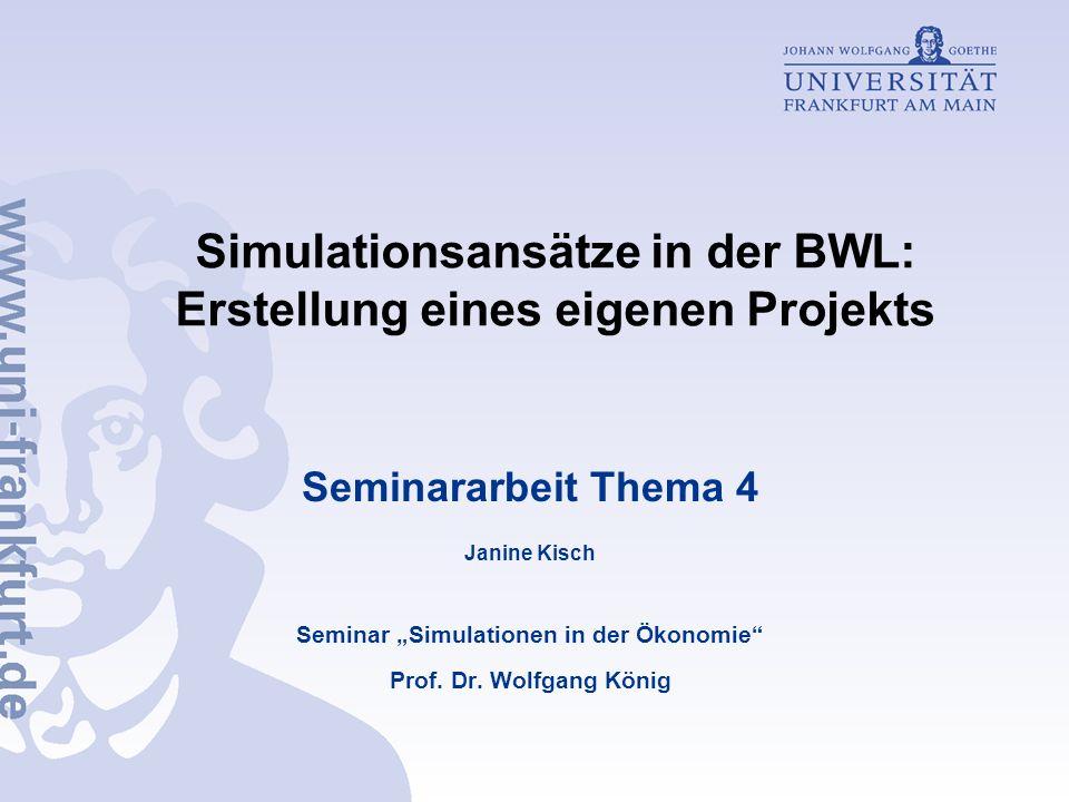 Simulationsansätze in der BWL: Erstellung eines eigenen Projekts