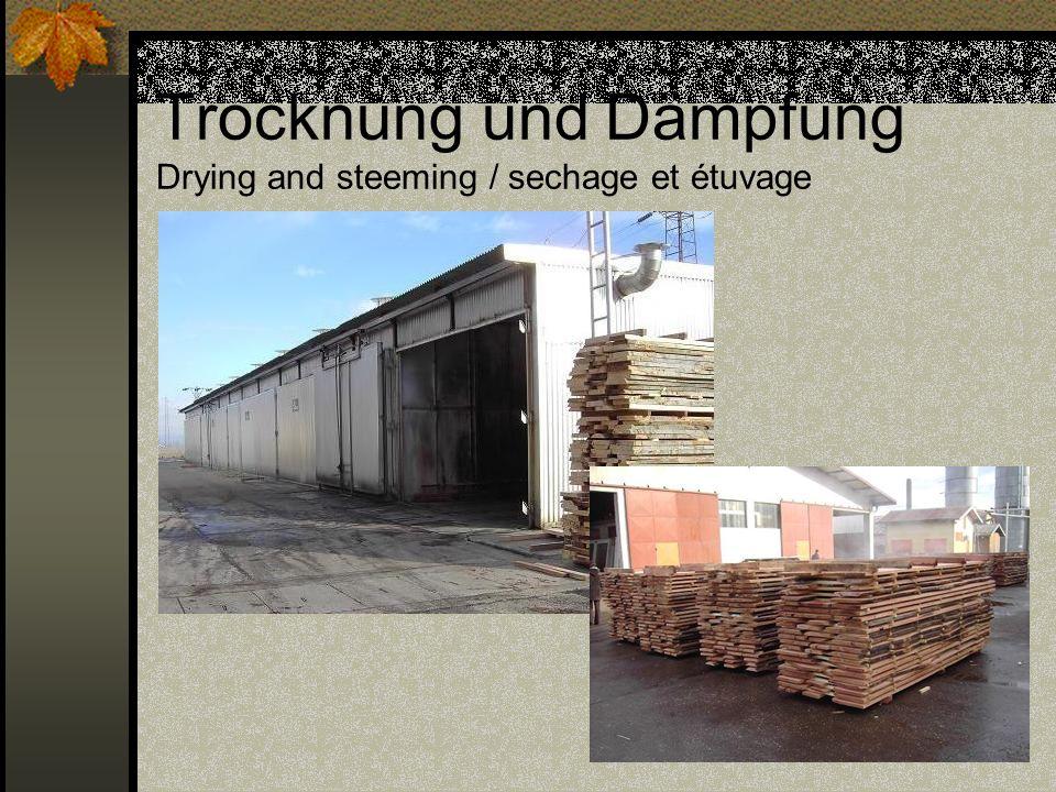 Trocknung und Dämpfung Drying and steeming / sechage et étuvage