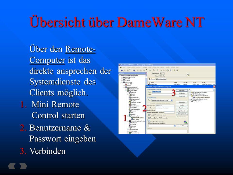 Übersicht über DameWare NT