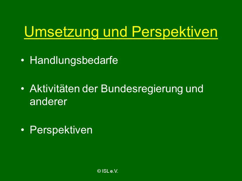 Umsetzung und Perspektiven