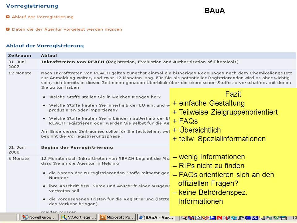 BAuAFazit. einfache Gestaltung. Teilweise Zielgruppenorientiert. FAQs. Übersichtlich. teilw. Spezialinformationen.