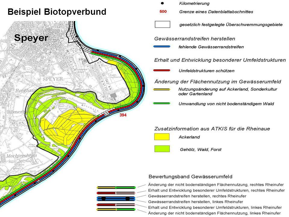 Beispiel Biotopverbund