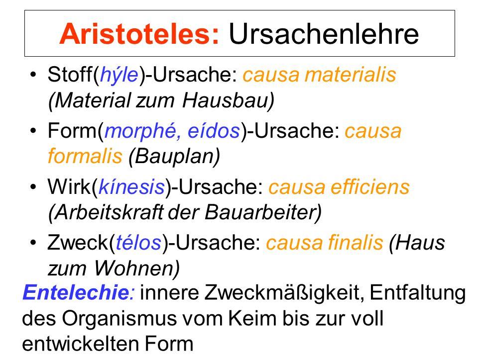 Aristoteles: Ursachenlehre