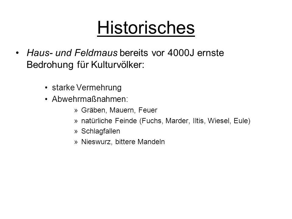 Historisches Haus- und Feldmaus bereits vor 4000J ernste Bedrohung für Kulturvölker: starke Vermehrung.