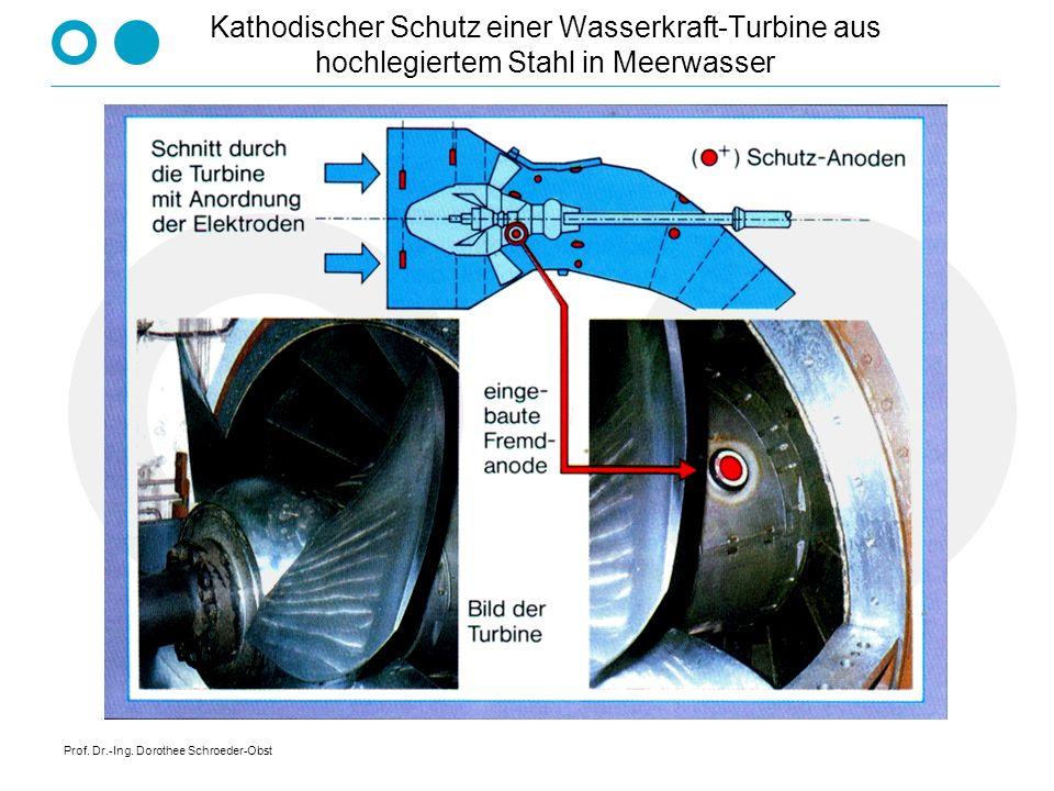Kathodischer Schutz einer Wasserkraft-Turbine aus hochlegiertem Stahl in Meerwasser