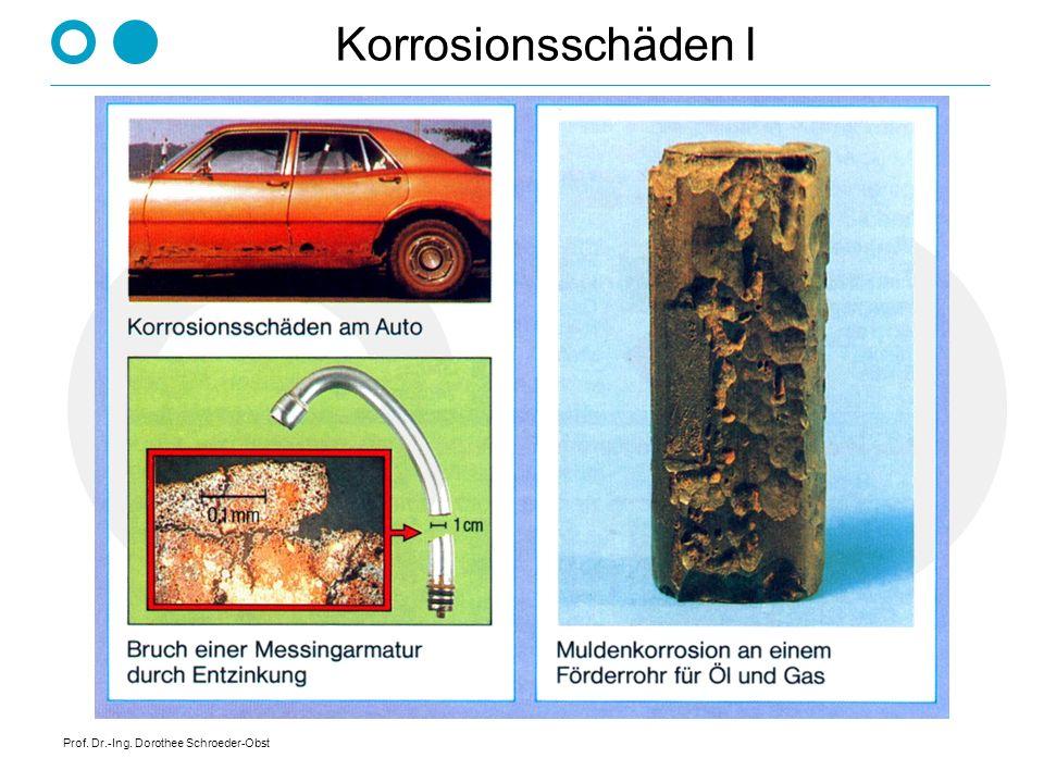 Korrosionsschäden I Prof. Dr.-Ing. Dorothee Schroeder-Obst