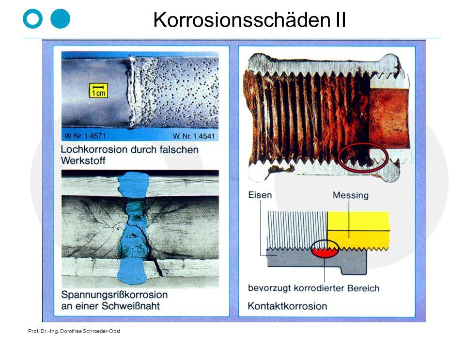 Korrosionsschäden II Prof. Dr.-Ing. Dorothee Schroeder-Obst
