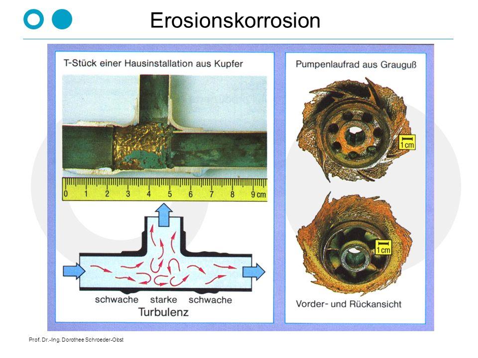 Erosionskorrosion Prof. Dr.-Ing. Dorothee Schroeder-Obst