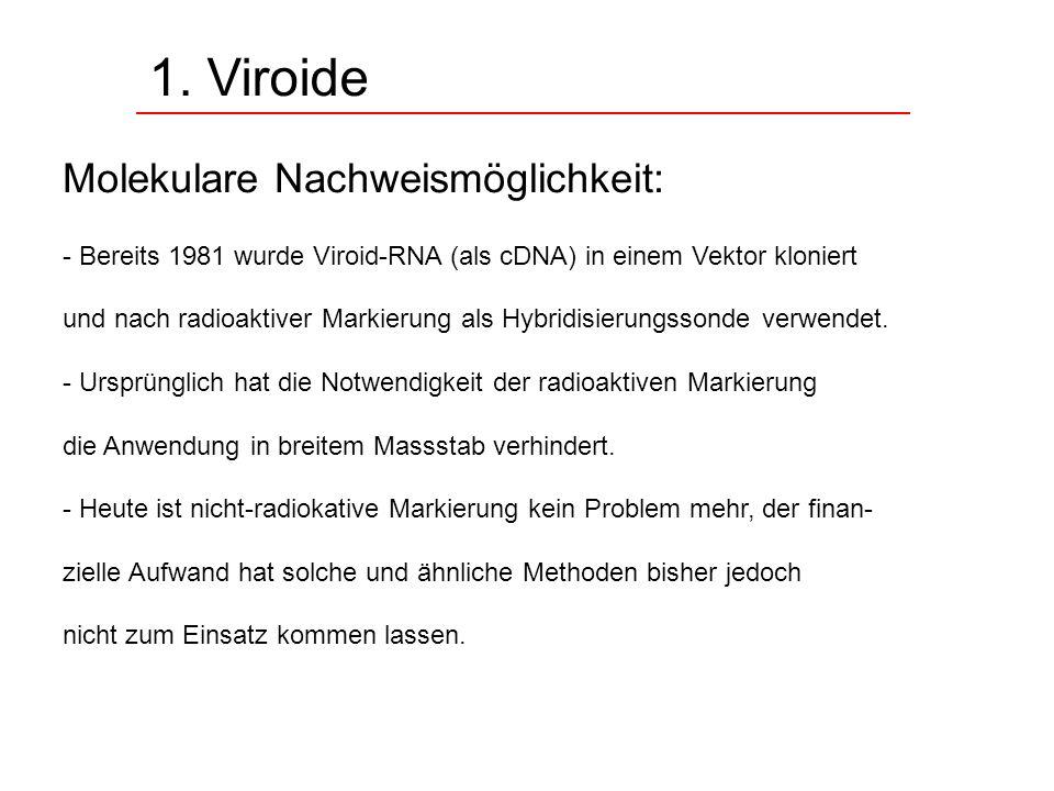 1. Viroide Molekulare Nachweismöglichkeit: