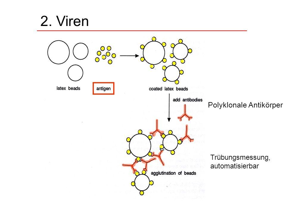 2. Viren Polyklonale Antikörper Trübungsmessung, automatisierbar