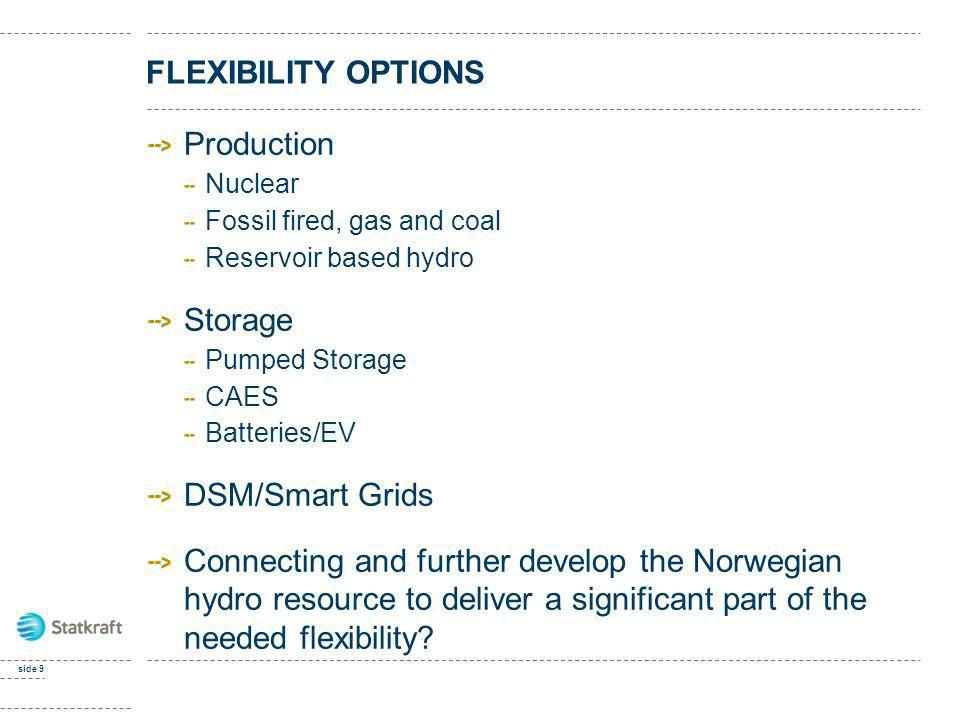 FLEXIBILITY OPTIONS Production Storage DSM/Smart Grids